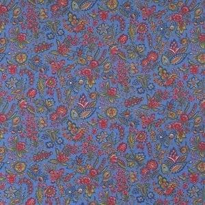 DSC_6954-Les-petits-bouuets-klaar-blauw