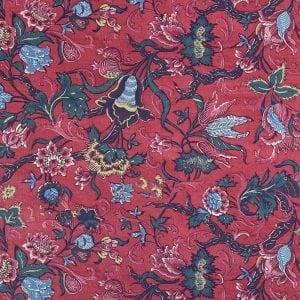 DSC_7153-dessin-Tulpen-meekrap-rood